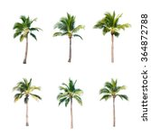 Coconut Trees White Background  - Fine Art prints