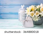 Bright Daffodils And Tulips ...