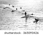 Silhouette Of Several Surfers...