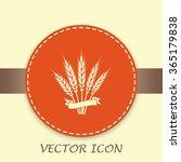 stock vector illustration  wheat