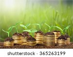 investment. | Shutterstock . vector #365263199