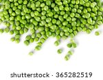 Green Peas Isolated On The...