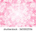 cherry spring flower background | Shutterstock .eps vector #365302556