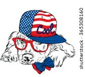 labrador wearing a cap and a... | Shutterstock .eps vector #365308160