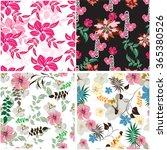 seamless  spring flower... | Shutterstock .eps vector #365380526
