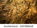 Okinawa Stalactite Cave