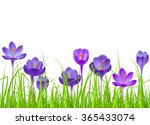 seamless horizontal border with ... | Shutterstock .eps vector #365433074