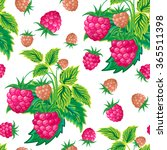 pattern of raspberry hand... | Shutterstock .eps vector #365511398