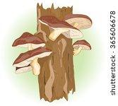 Shiitake Mushroom Growing On...