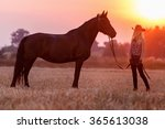 cowgirl with a horse at sunset. | Shutterstock . vector #365613038