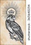 detailed hand drawn bird of...   Shutterstock .eps vector #365640254