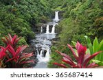 Botanical Gardens Hilo Hawaii