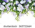 stylize frame with white  lilac ... | Shutterstock . vector #365722664