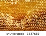 Close-up of natural honeycomb - stock photo