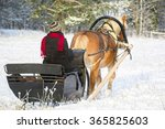 Sleigh Ride With Horse Drawn...
