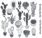 cactus and succulents isolated... | Shutterstock .eps vector #365878418