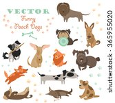 set of funny mixed breed dogs   Shutterstock .eps vector #365955020