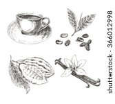 vector hand drawn set with... | Shutterstock .eps vector #366012998