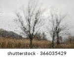 Bare Trees And Brown Grass Seen ...