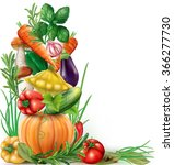 vegetables and spices vertical... | Shutterstock .eps vector #366277730