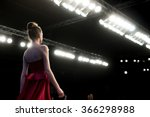 fashion show | Shutterstock . vector #366298988