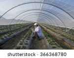 agricultural engineer working... | Shutterstock . vector #366368780
