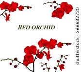 Illustration With Red Orchid.