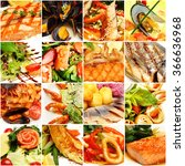 food collage. gourmet... | Shutterstock . vector #366636968
