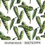 banana leaves watercolor with... | Shutterstock . vector #366762494