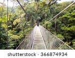 bridge in the tree top | Shutterstock . vector #366874934