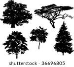 illustration with five tree... | Shutterstock .eps vector #36696805