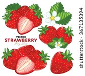 strawberry on white background. ...