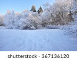 winter wonderland in a mixed... | Shutterstock . vector #367136120