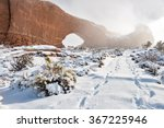 Footprints In Snow Lead Past A...