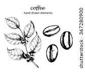 ink drawn coffee branch and... | Shutterstock .eps vector #367280900