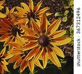 illustrative image of yellow... | Shutterstock . vector #367312496