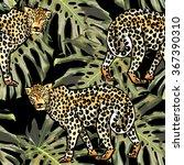 leopard and monstera palm... | Shutterstock . vector #367390310