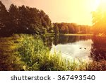 sunset over lake with ducks.... | Shutterstock . vector #367493540
