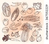 doodle vector illustration of...   Shutterstock .eps vector #367552229