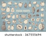 big collection of fruits on... | Shutterstock .eps vector #367555694