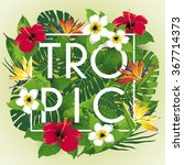 tropic and exotic beautiful...   Shutterstock .eps vector #367714373