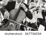 professional cello player... | Shutterstock . vector #367736534