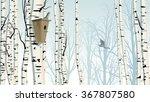 horizontal illustration of... | Shutterstock .eps vector #367807580