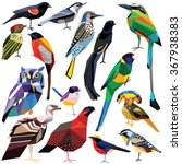 Birds Set Colorful Low Poly...