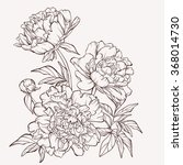 blossoming peony flowers on... | Shutterstock .eps vector #368014730