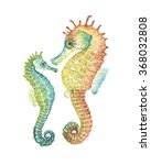 mom and baby seahorses ... | Shutterstock . vector #368032808