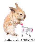 little rabbit with shopping... | Shutterstock . vector #368150780