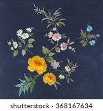 floral hand made design   Shutterstock . vector #368167634