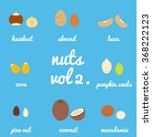 vol 2. nuts and seeds icon set  ... | Shutterstock .eps vector #368222123