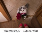 Cat Brought Roses As A Gift To...
